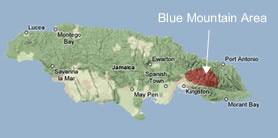 jbmJamaican Blue Mountain Coffee